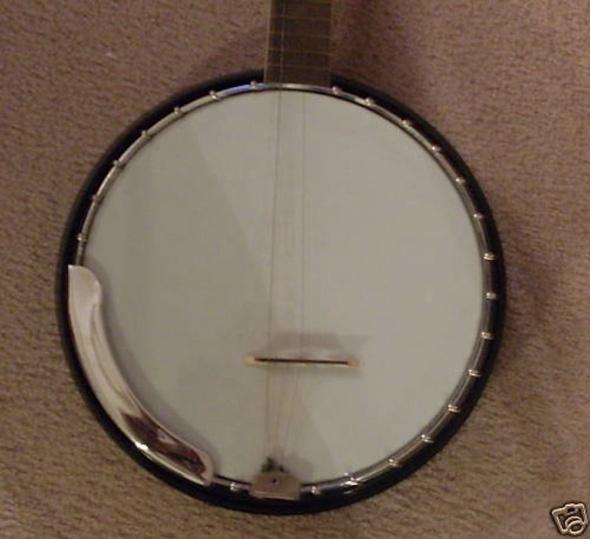 onestring banjo
